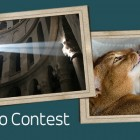 BEGIN. photo contest